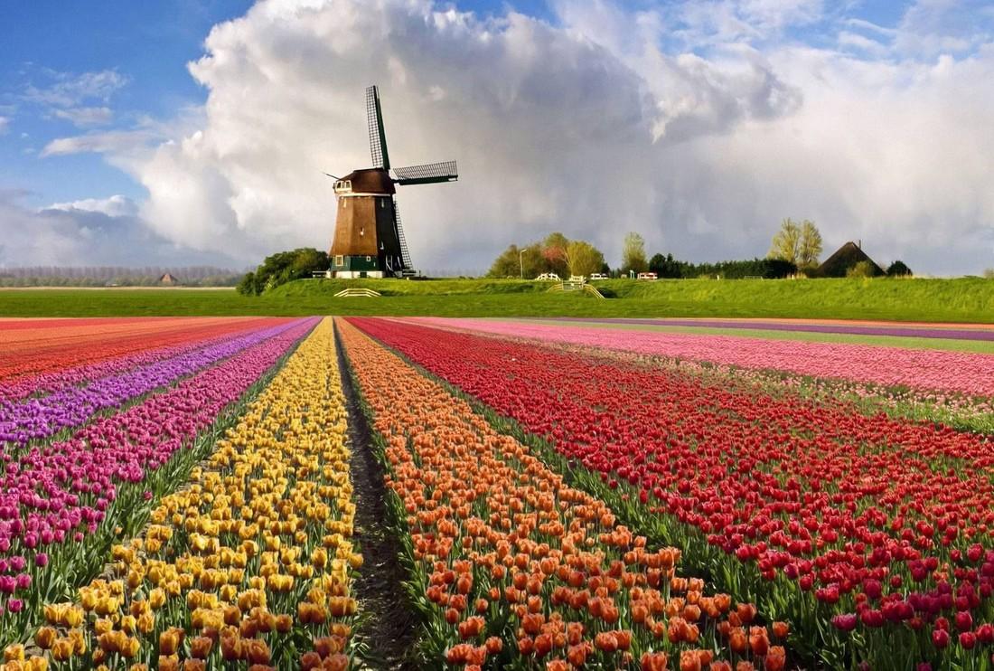 Виза в Амстердам для россиян нужна ли и как е сделать